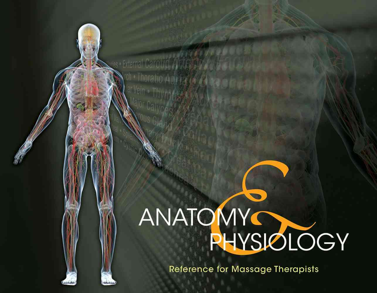 Anatomy & Physiology Reference for Massage Therapists By Milady